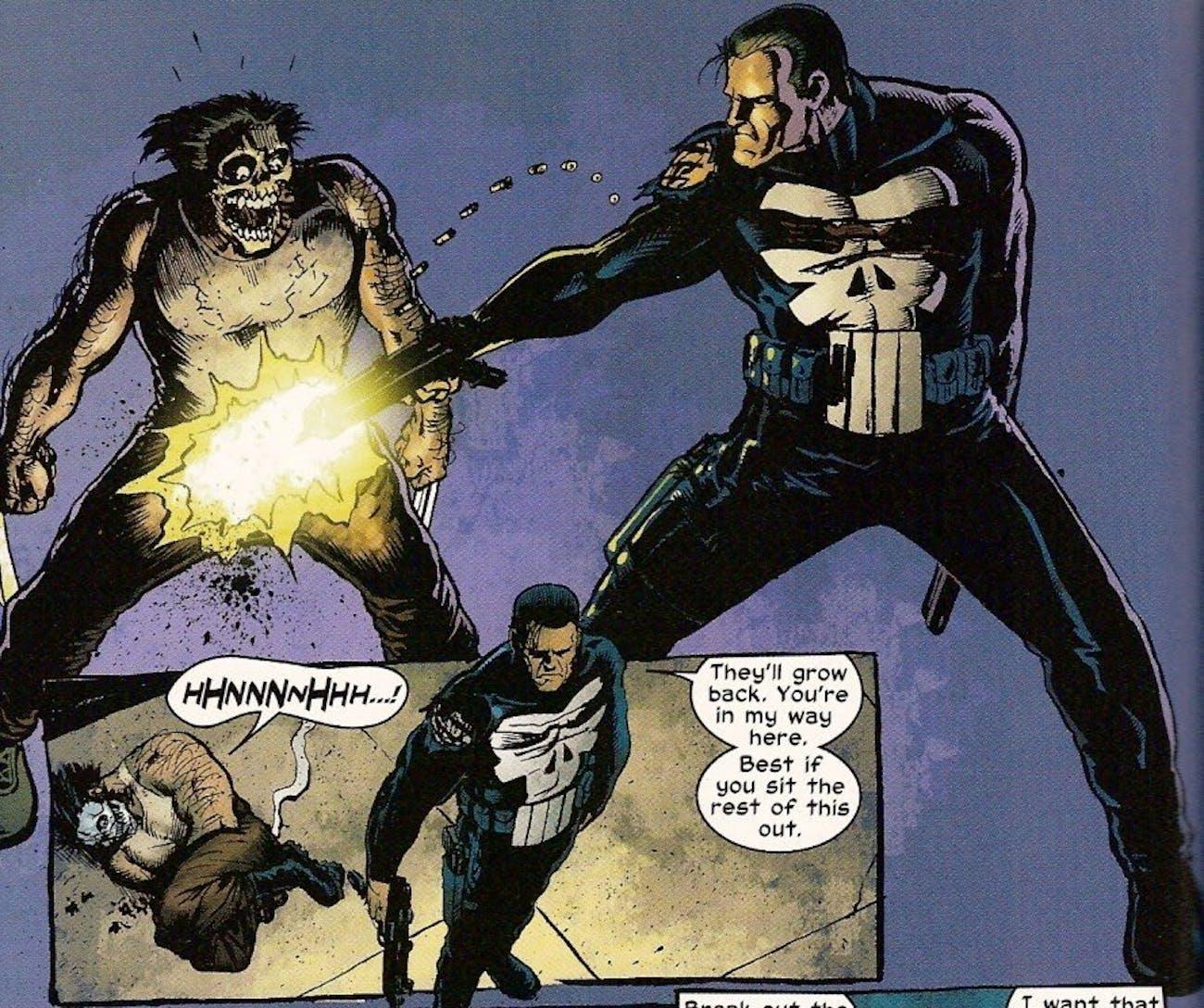 Wolverine Punisher