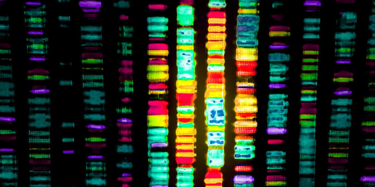 The first draft of the human genome was published on February 15, 2001.