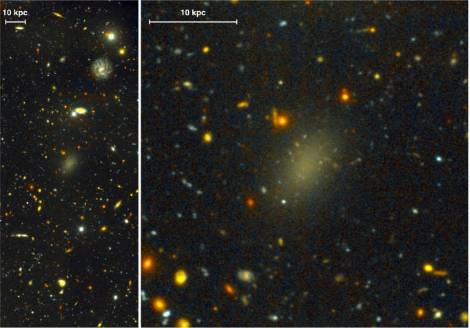 Dragonfly 44 is dim and diffuse compared with neighboring galaxies. The bars indicate a distance of 10 kiloparsecs, or 32,616 light years.