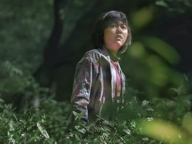 Bong Joon-ho's Netflix Movie 'Okja' Looks Amazingly Bizarre