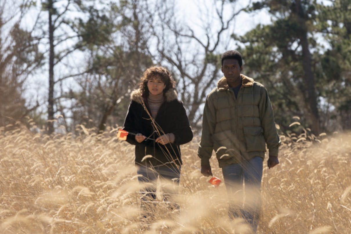 'True Detective' Season 3