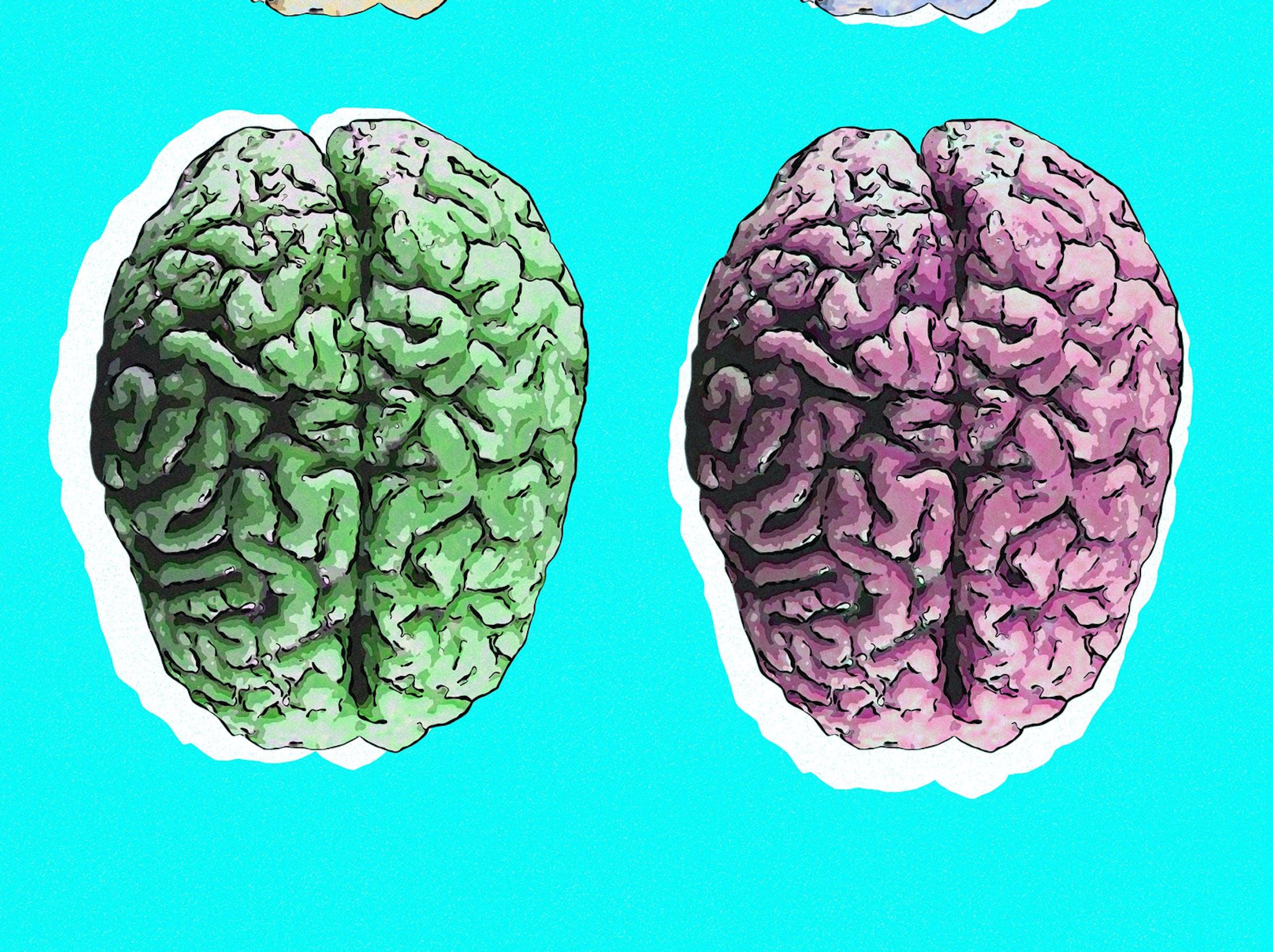 brains on background