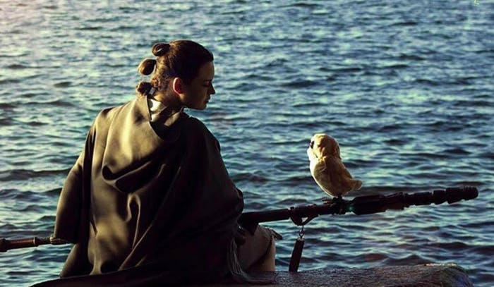 Cosplayer Stefany Lauren as Rey alongside a Porg.