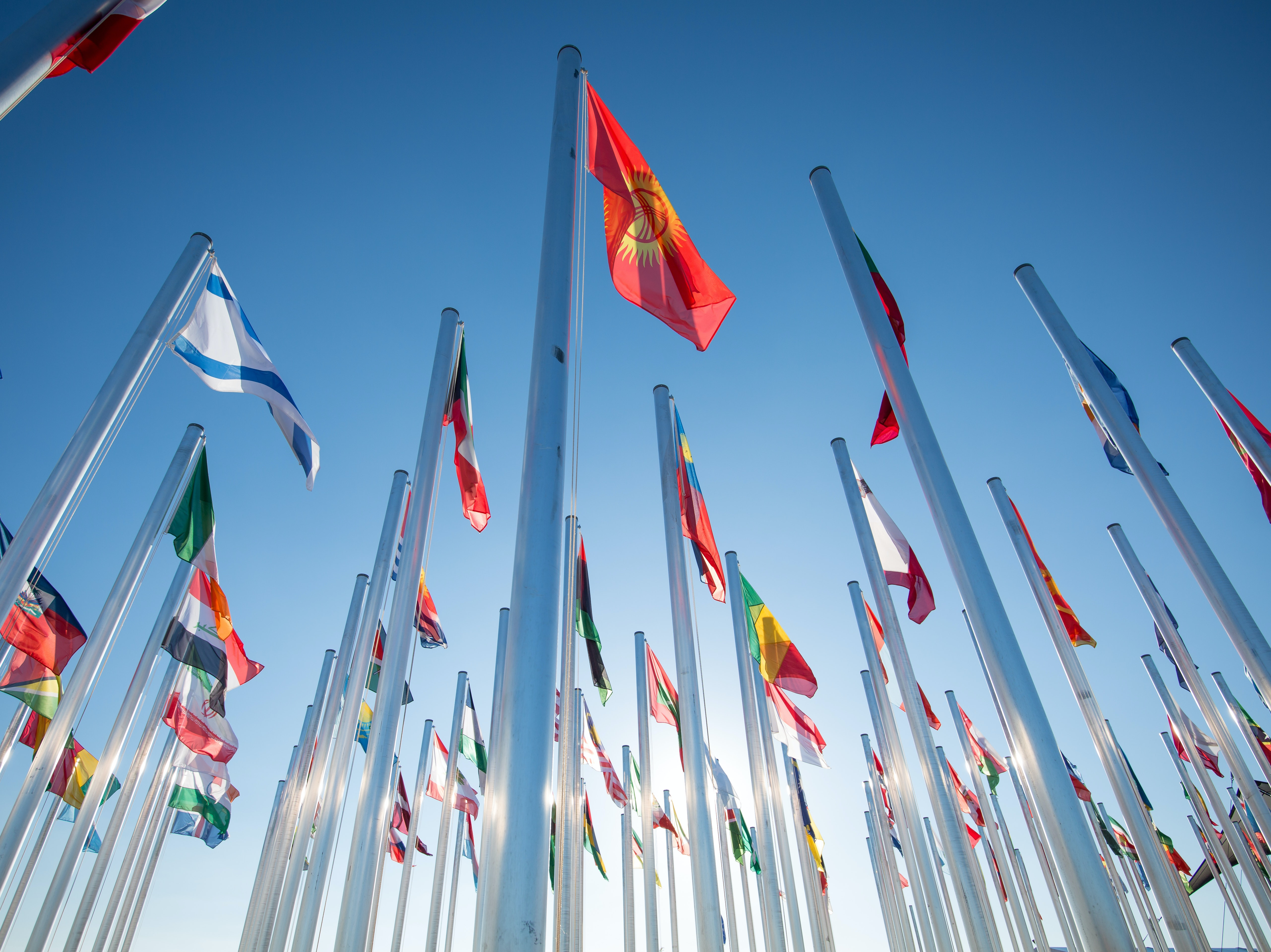 Country Flags outside the conference venue