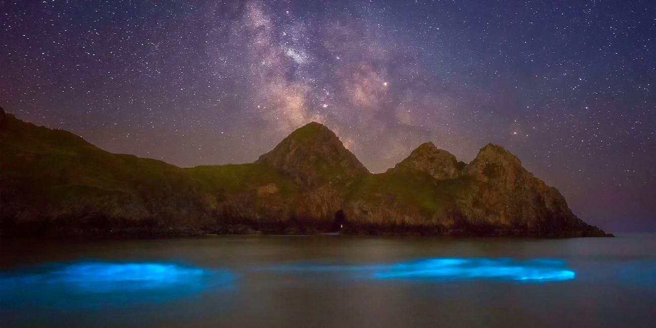Wales bioluminescent plankton