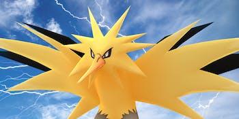 Pokemon GO Shiny Zapdos