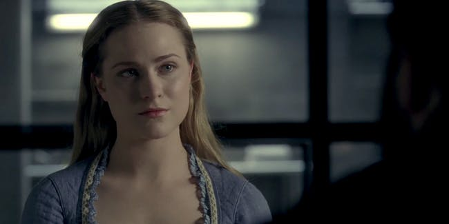 Essential plot details for 'Westworld'