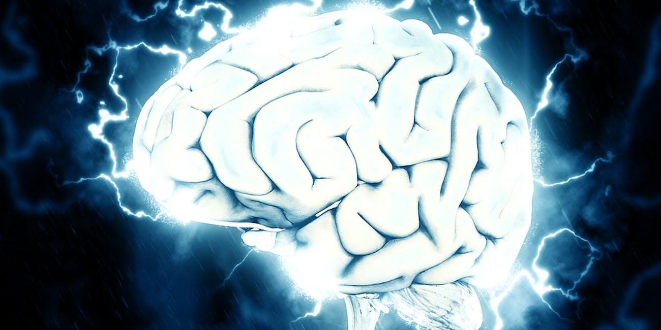 brain, consciousness