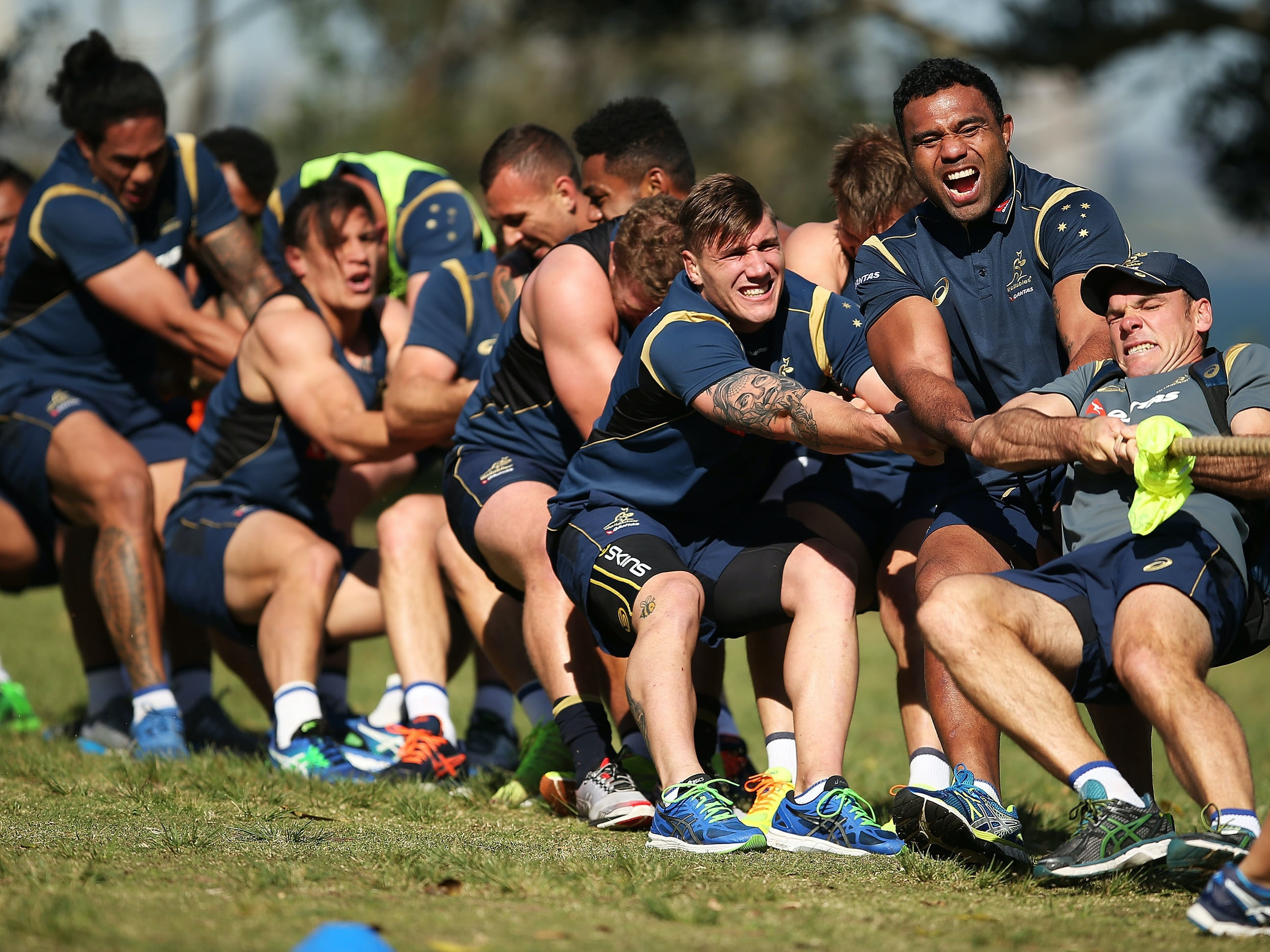 SYDNEY, AUSTRALIA - AUGUST 28:  Wallabies players contest a 'tug of war' during an Australian Wallabies training session at Little Manly Beach on August 28, 2015 in Sydney, Australia.  (Photo by Brendon Thorne/Getty Images)