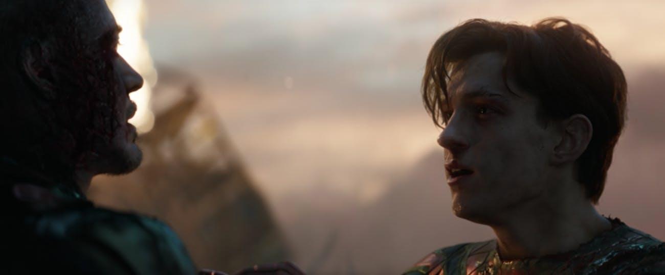 Spider-Man Peter Parker Avengers Endgame