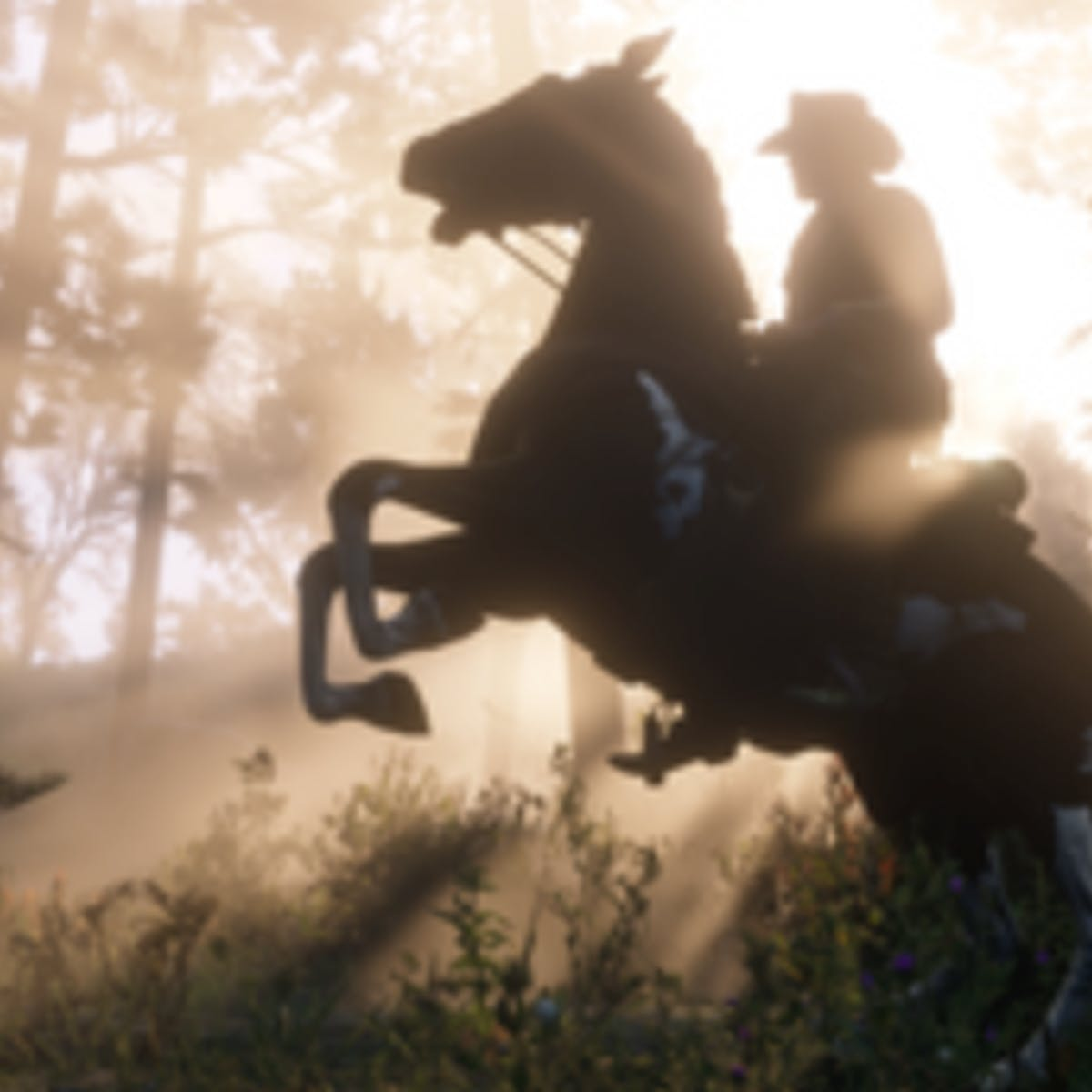 Red Dead Redemption 2' Fence Locations: Use This Map to Find