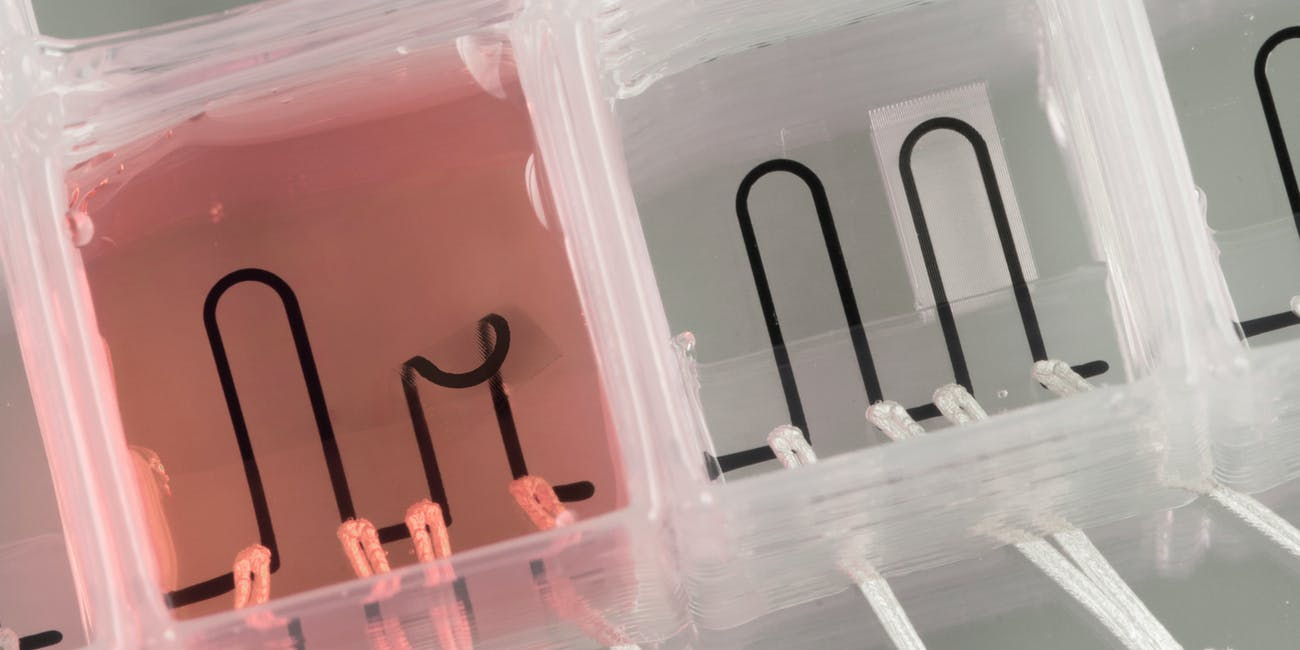 Harvard created the world's first 3D-printed heart-on-a-chip with integrated sensing.