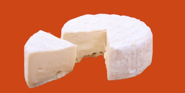 Cheese-6305111920-removebg-previewpng