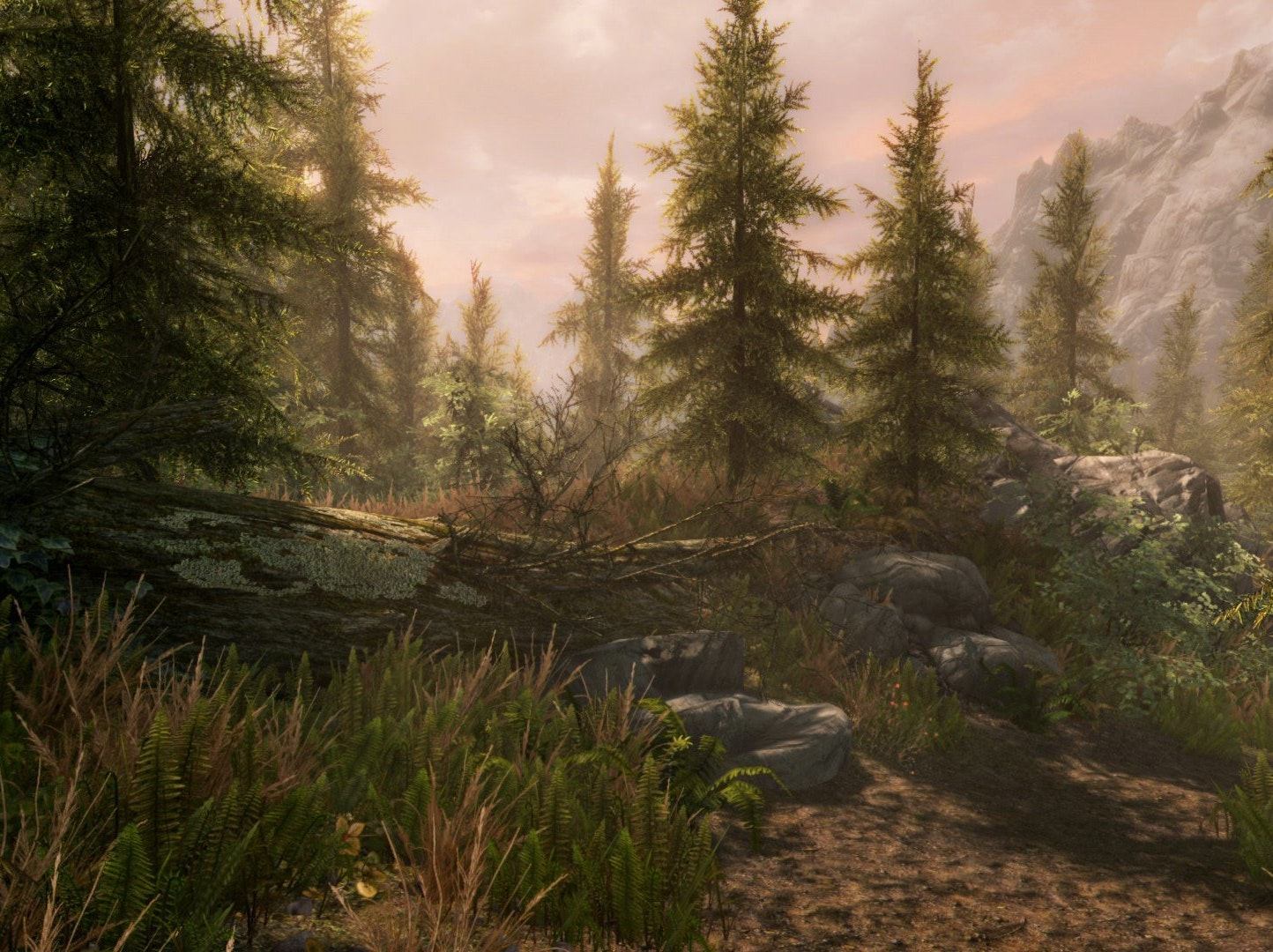 The Best Skyrim Mods For Console Players Inverse