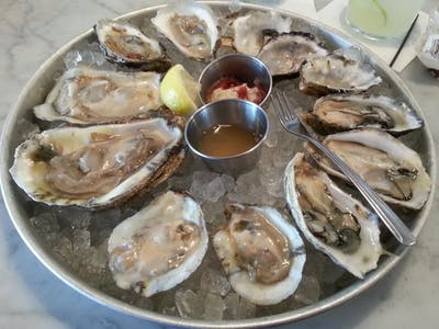 oysters on the half-shell - closeup - 2014-09-09