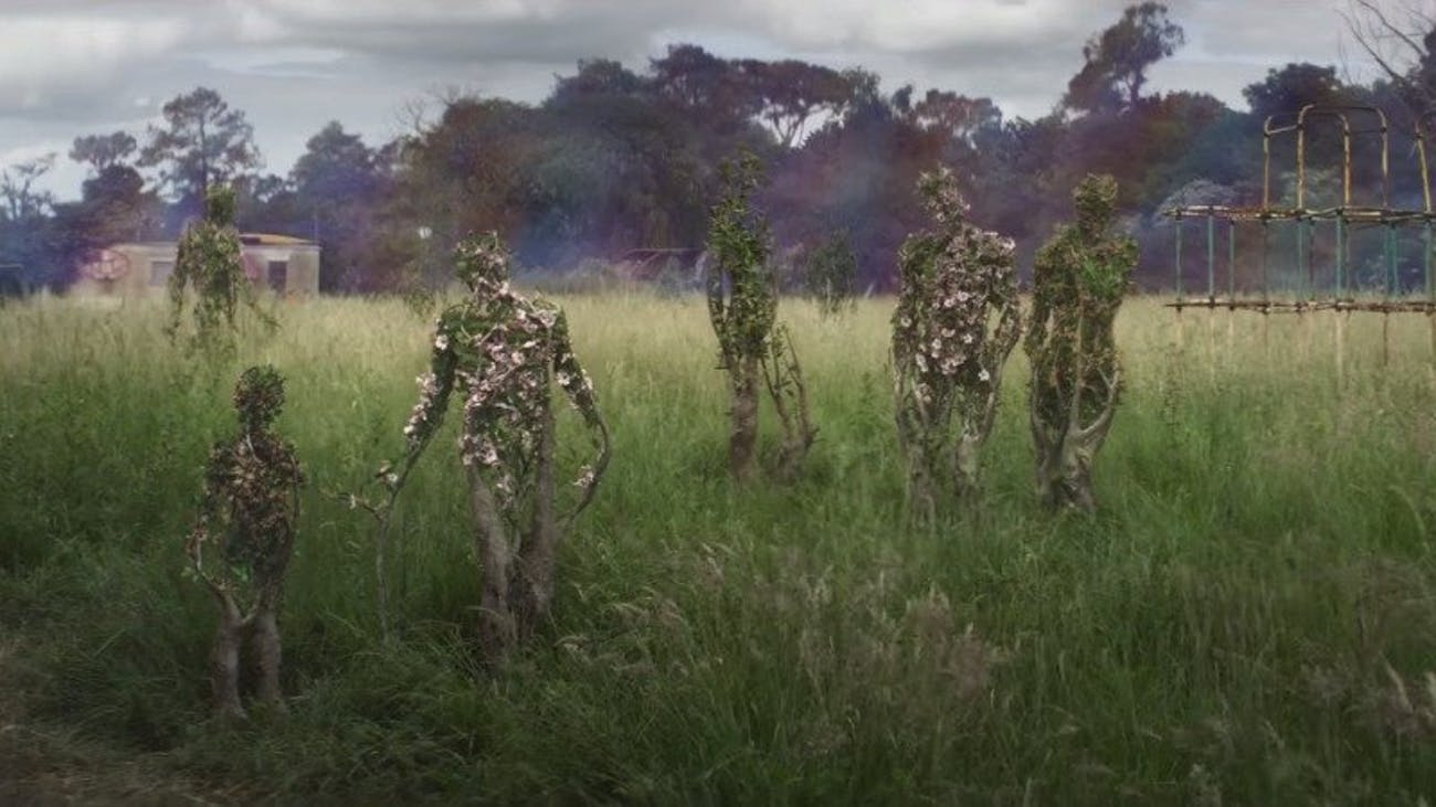 Kind of beautiful but also deeply disturbing. This image sums up 'Annihilation' in a nutshell.
