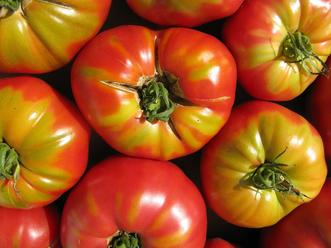 Whatever You Do, Do Not Put Your Tomatoes in the Refrigerator