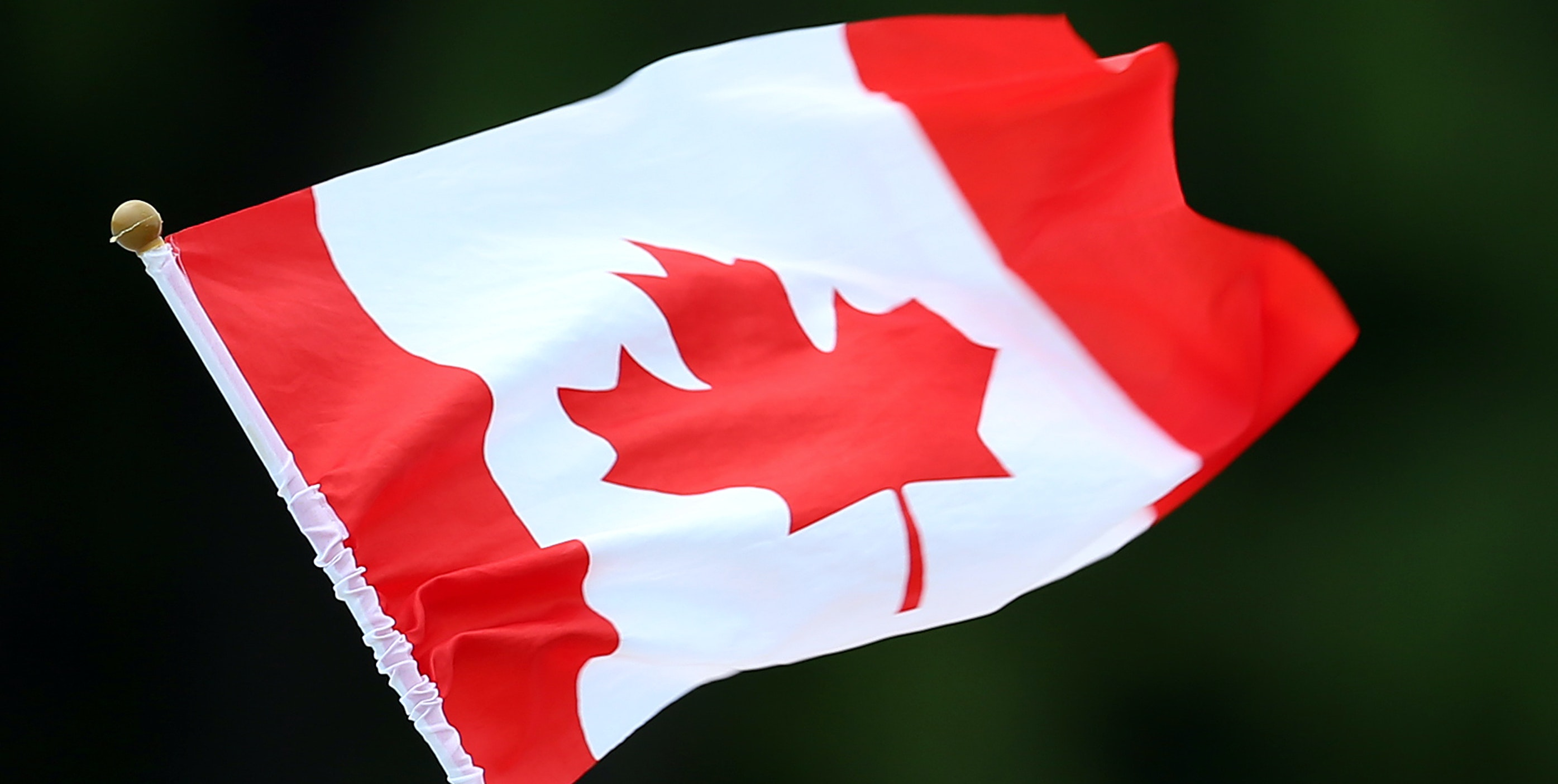 MONTREAL, QC - AUGUST 05:  A Canadian flag is waved as swimmers compete in the Women's 200m Freestyle at Parc Jean-Drapeau during the 15th FINA World Masters Championships on August 05, 2014 in Montreal, Canada.  (Photo by Vaughn Ridley/Getty Images)
