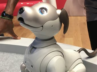 Aibo by Sony