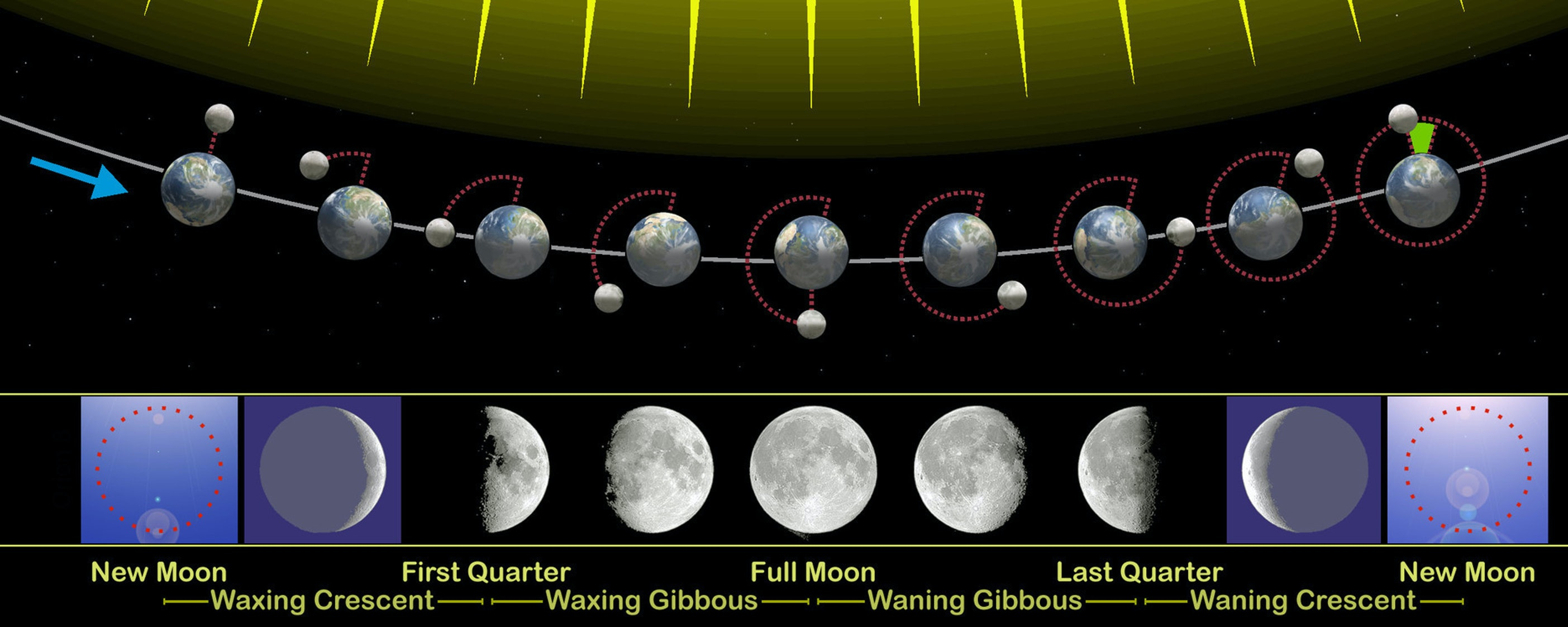 The moon's phases as it revolves around the earth