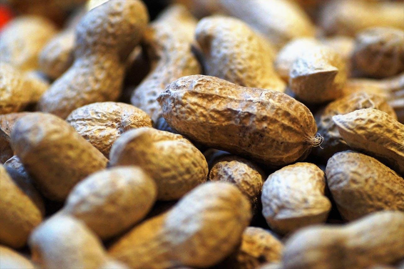 food allergies peanuts
