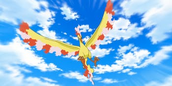 Pokemon Pokemon GO Legendary Bird Moltres