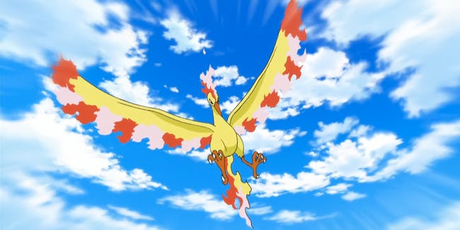 Pokemon Pokemon GO Legendary Bird Moltres
