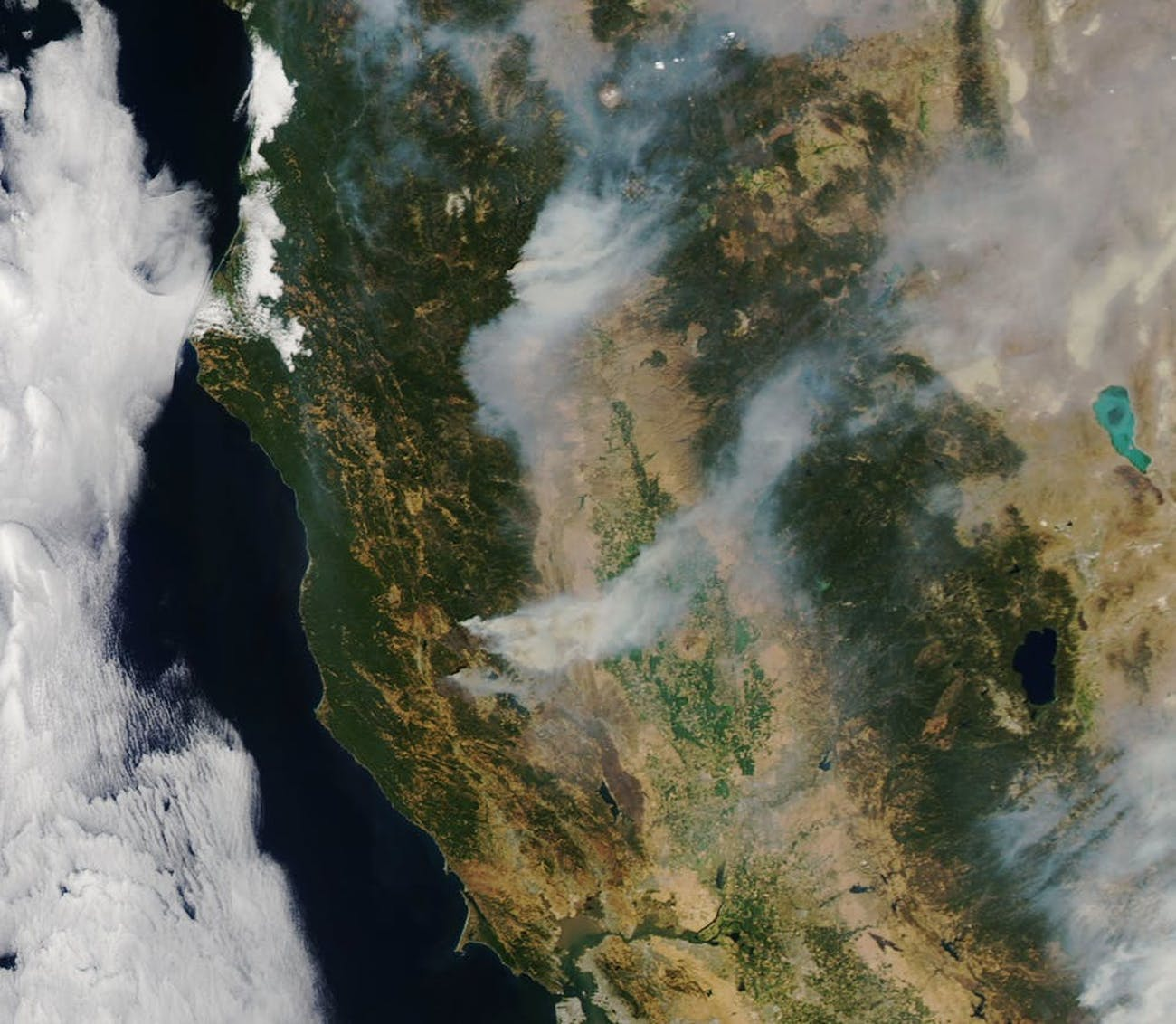 A satellite image of the Carr Fire in California. Drought conditions, in addition to a lot of dead trees and vegetation, are contributing to another year of severe wildfires.