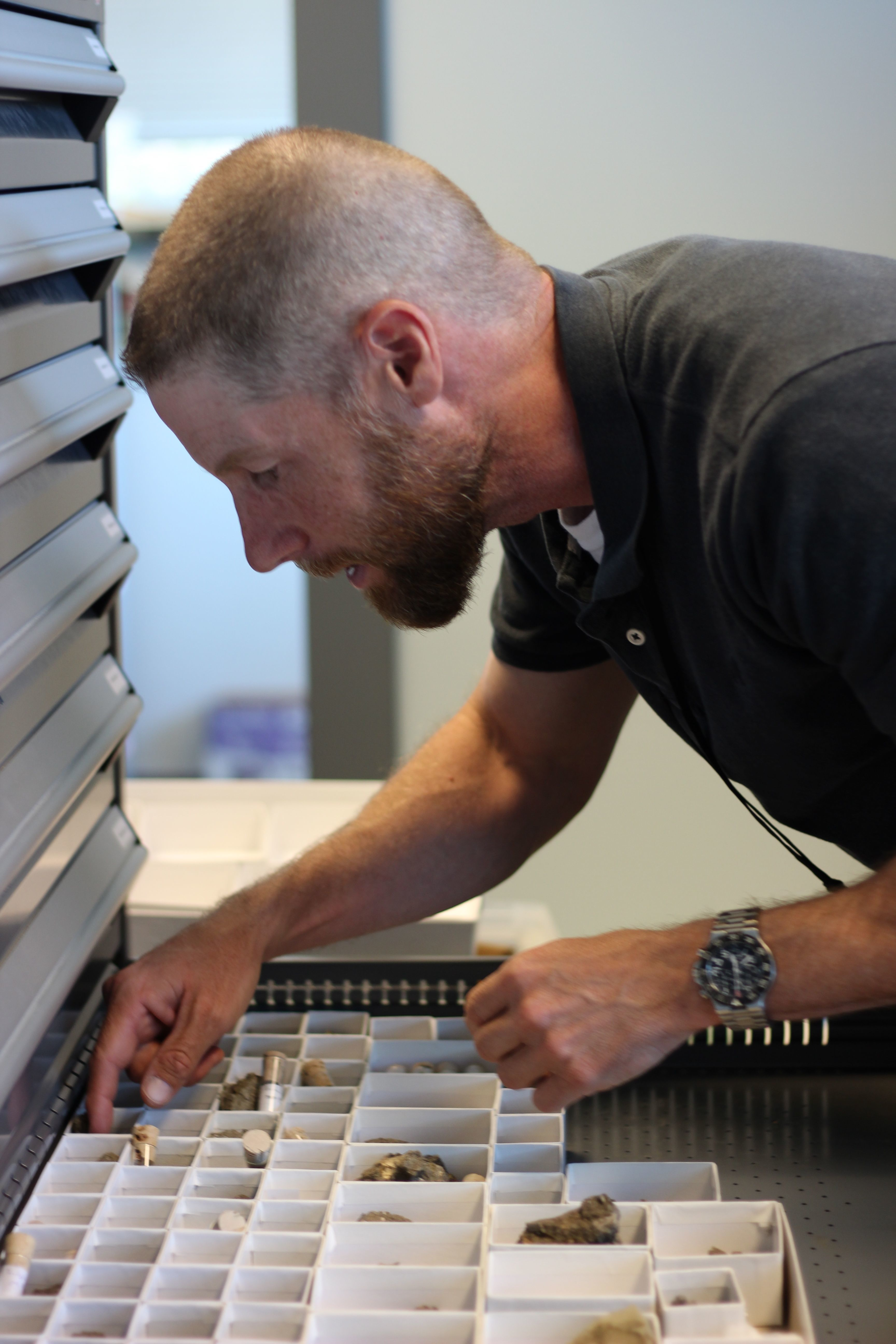 Craig Scott examines his fossil mammal collection at the Royal Tyrrell Museum.