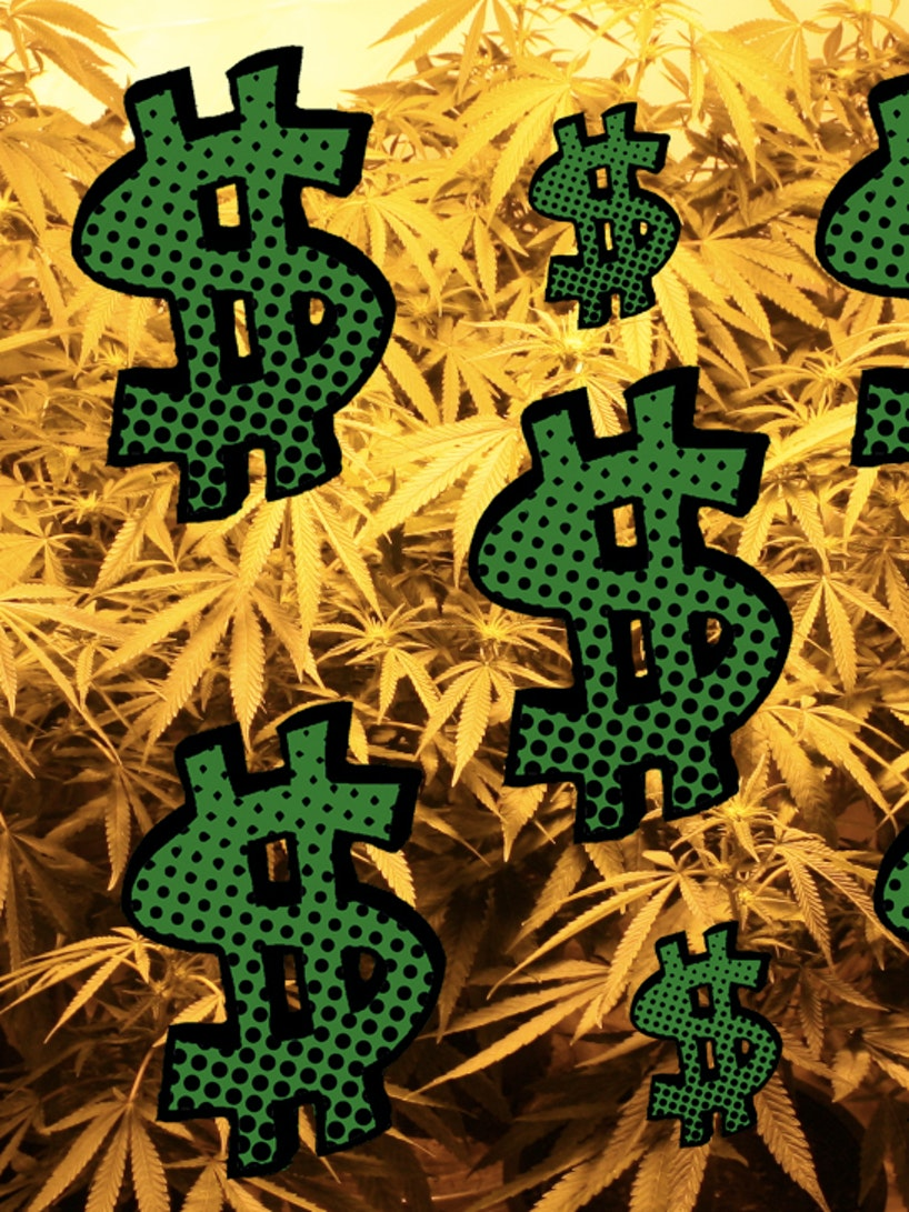Knowing how to grow weed can make you rich.