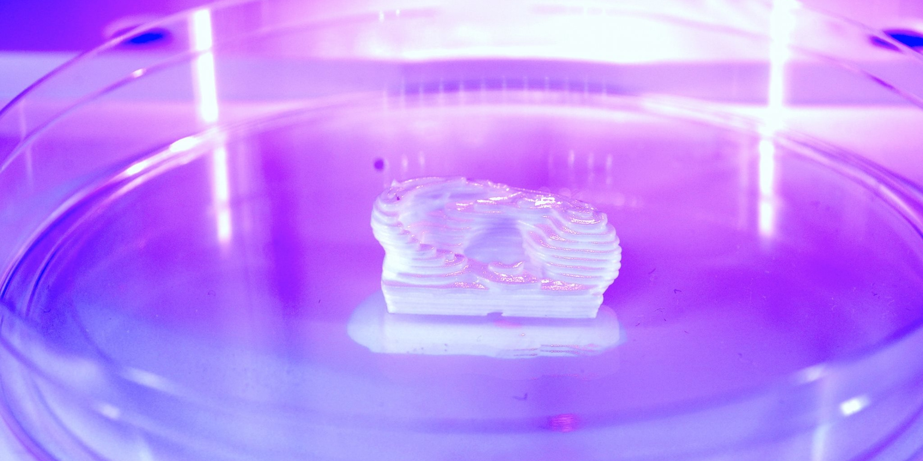 CELLINK Wants to Make 3D-Printed Human Organs Big Business (and They're Not Crazy)