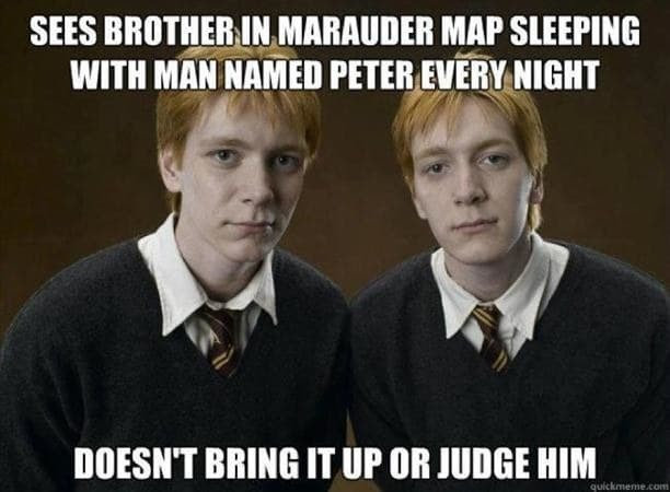 Funny Harry Potter Memes Voldemort : Of the most hilarious harry potter memes inverse