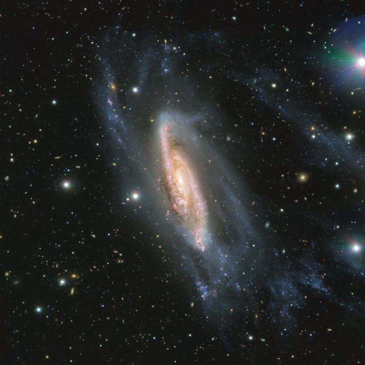 Resplendent Spiral Galaxy Found Within the Crater Constellation