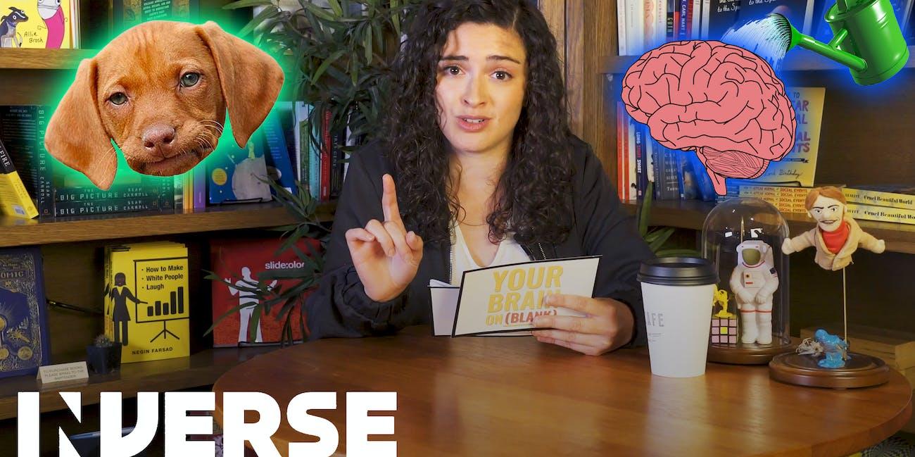 Shannon Odell neuroscience