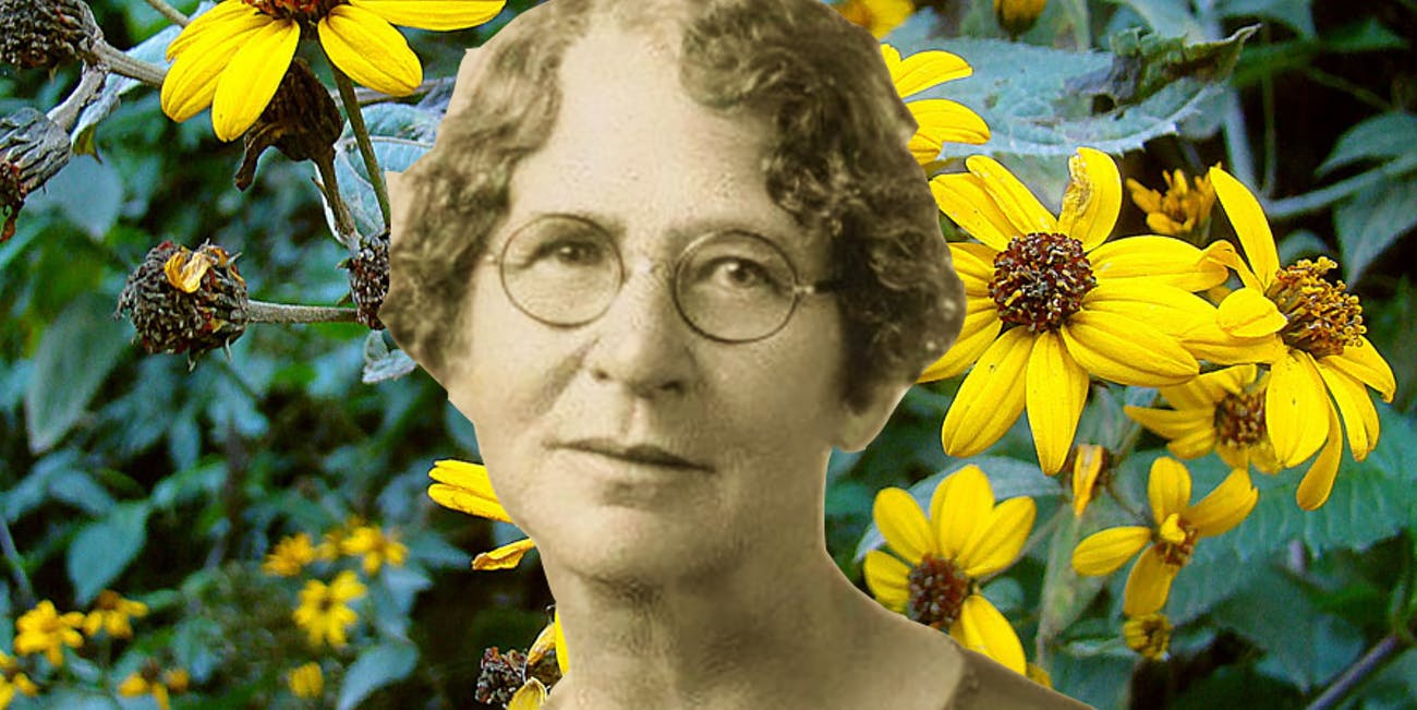 Ynés Mexía: Pioneering Botanist, Late Bloomer, Discovered ...