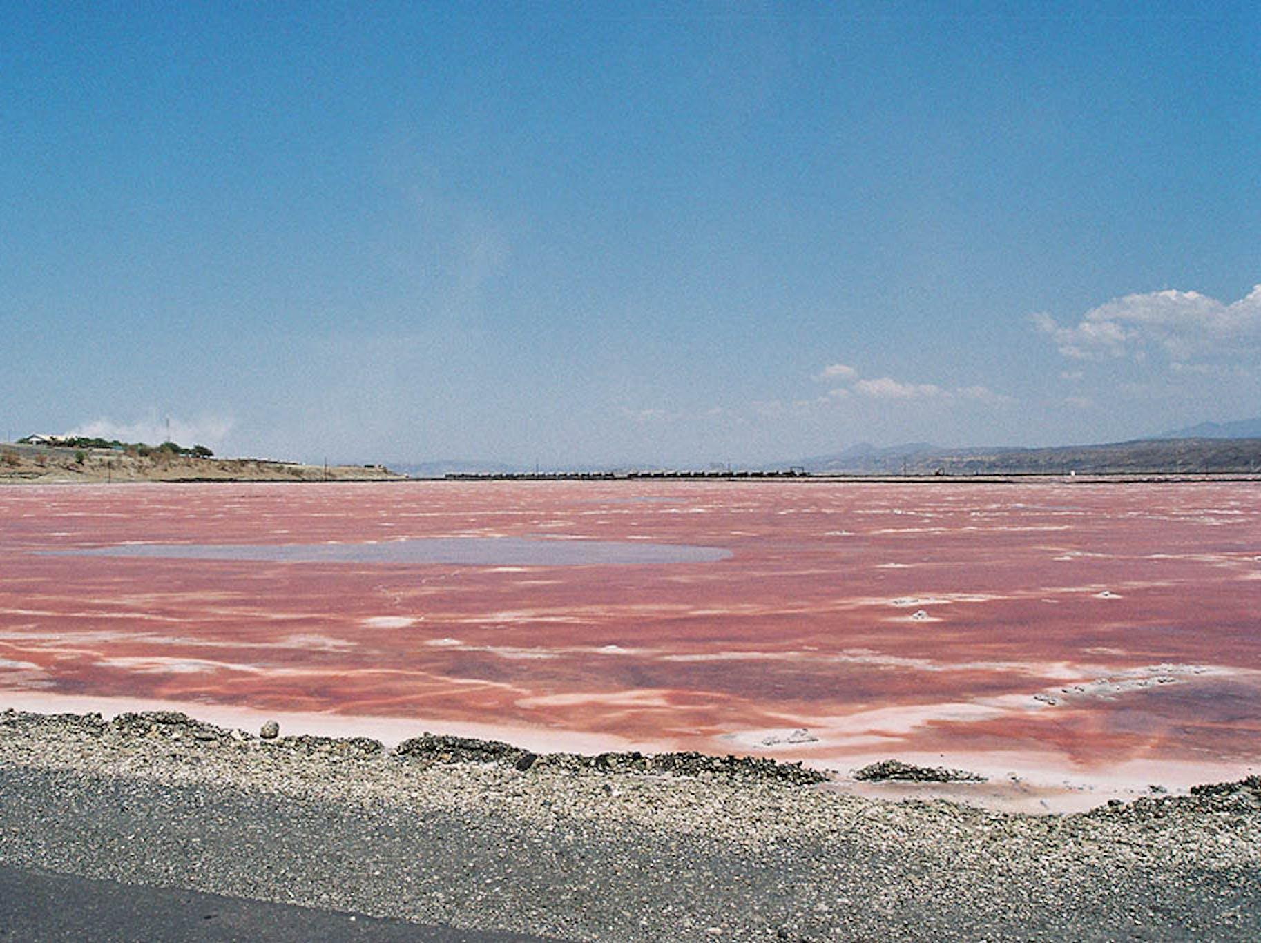 Pink lake, Kenya