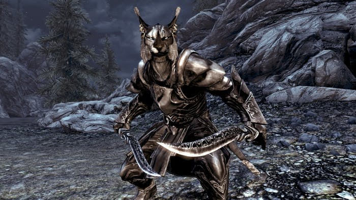 """The """"Deranged Khajiit"""" I fought might look just like this one from 'Skyrim'."""