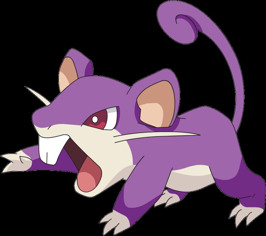 Seen here: Rattata.