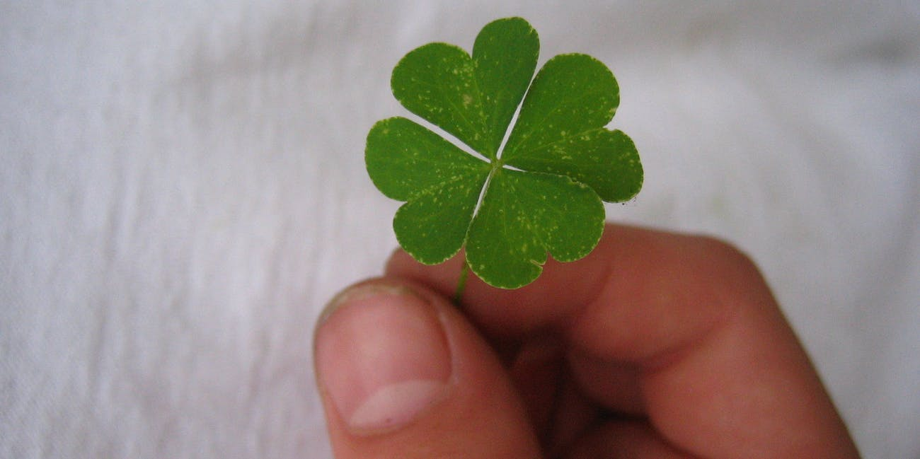 Fibonacci Sequence Explains Why Four Leaf Clovers Are So Rare Inverse