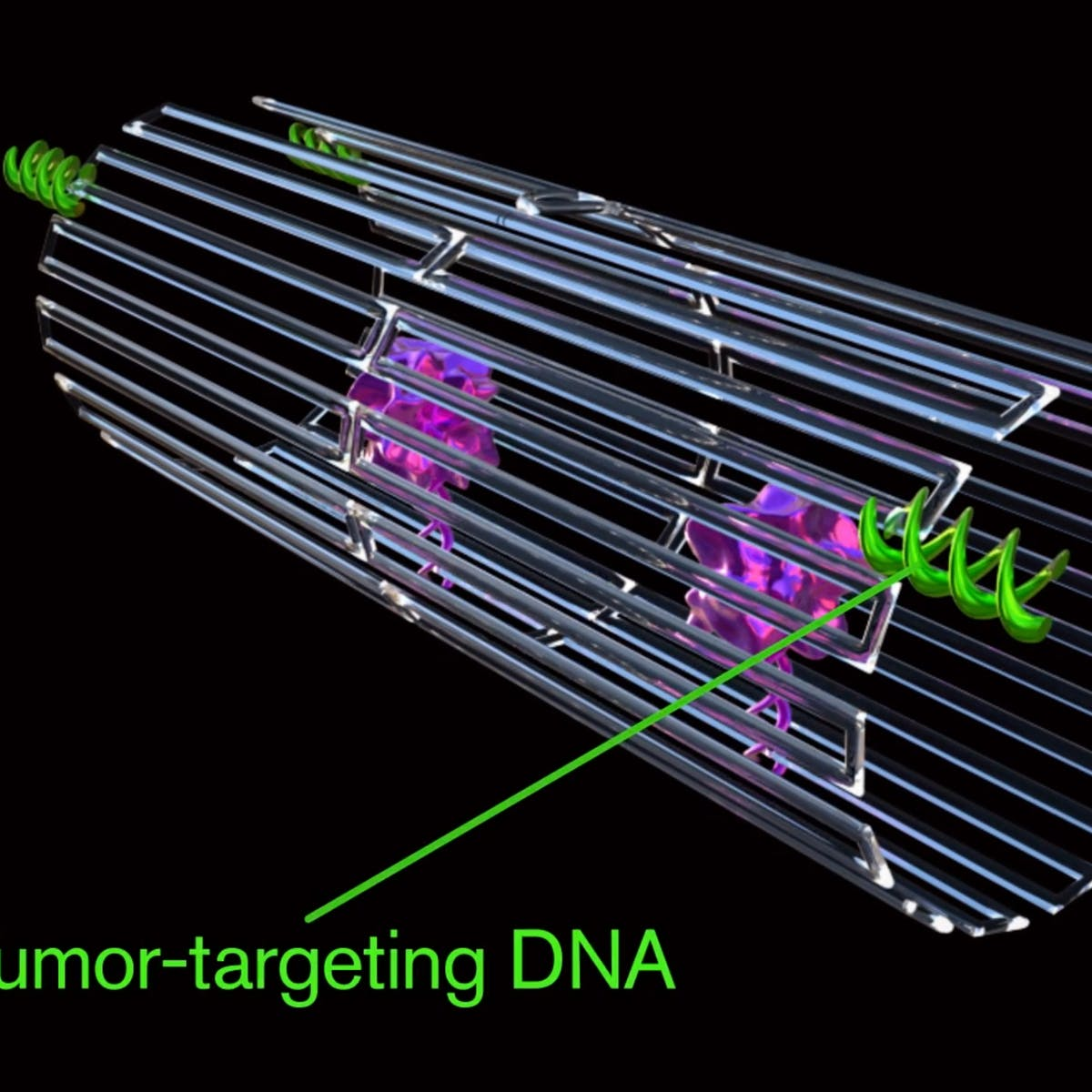 DNA Origami Nanobots Kill Tumors in Groundbreaking Study