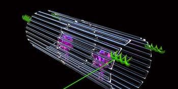 DNA origami nanobots target tumor-feeding blood vessels.