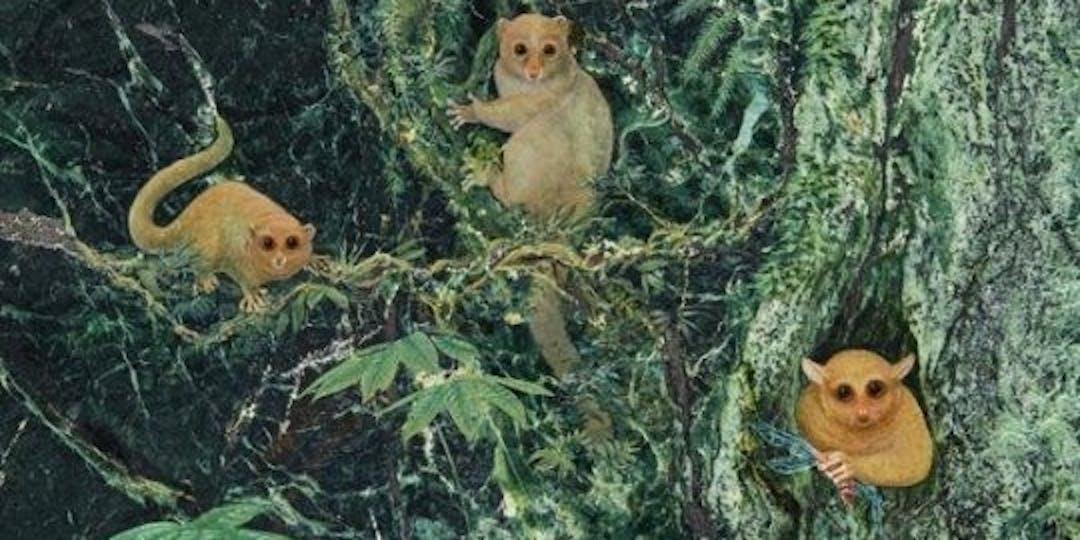 new primates