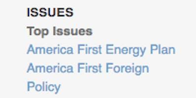 trump's whitehouse.gov issues list