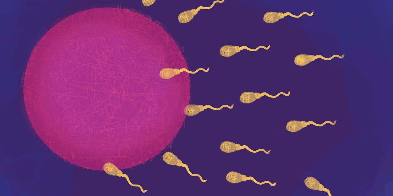 "DNA Reveals How ""Severe Spermatogenic Failure"" May Begin in Infertile Men"