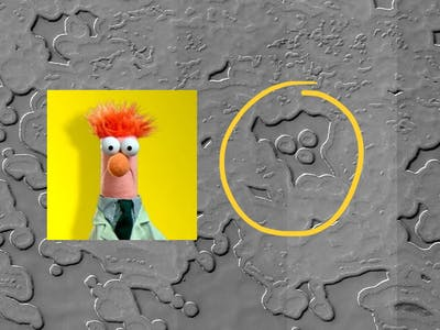 Beaker on Mars