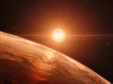 The Internet Flips Out Over the Discovery of 7 Earth-Like Planets