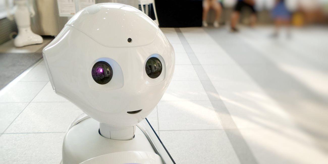 robots elections