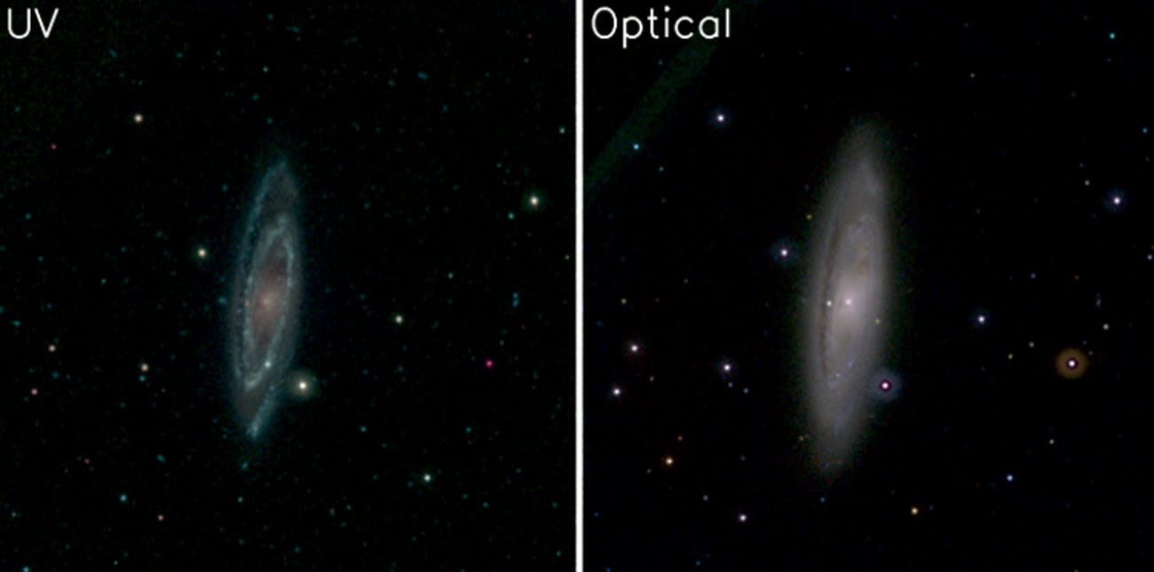 On the left is an image of the nearby galaxy NGC 3623 taken with UV. On the right is an optical image. Note how the galaxies spiral arms — where new stars are being born — stand out in the ultraviolet wavelengths emitted by these hot objects.