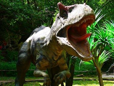 Allosaurus, DinoPark Bratislava