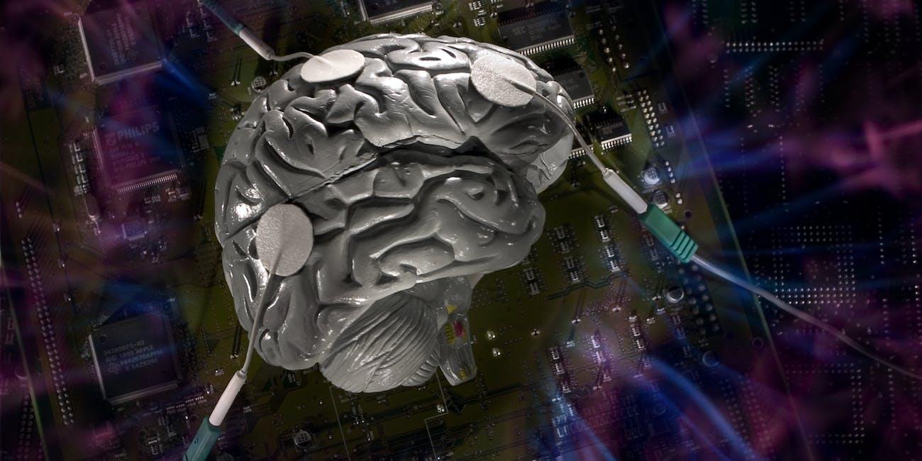 brain v.2